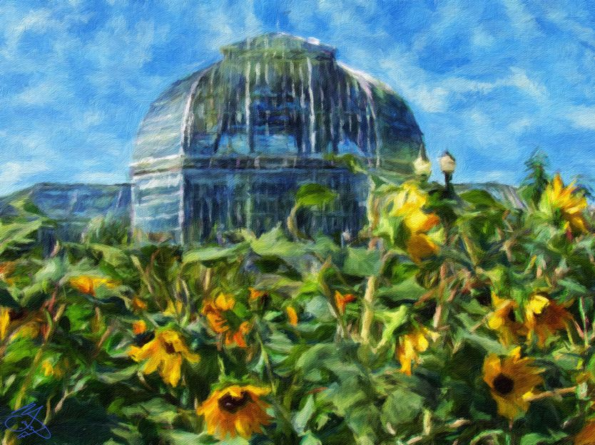 DC - Sunflowers and Hothouse 3a - Oil Painting - Hand Signed
