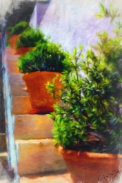 Granada - Sketches in Colour - Pot Plants 1a_MJONESPHI